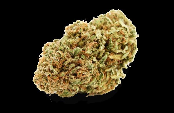 Chemdog Bud