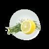 Flavour Lemon Limonene Flavour 01